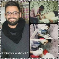 Muhammed,Ali,Demir